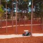 riggs barstool pinehurst