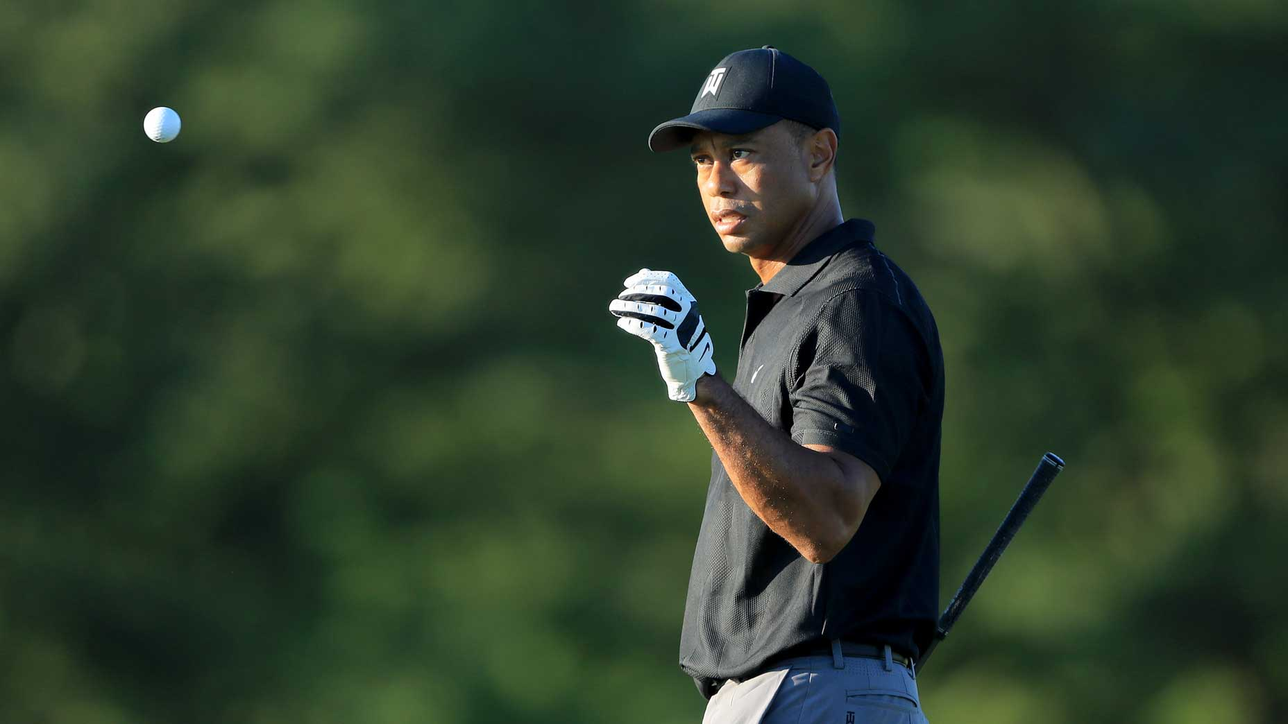 Tiger Woods catches golf ball