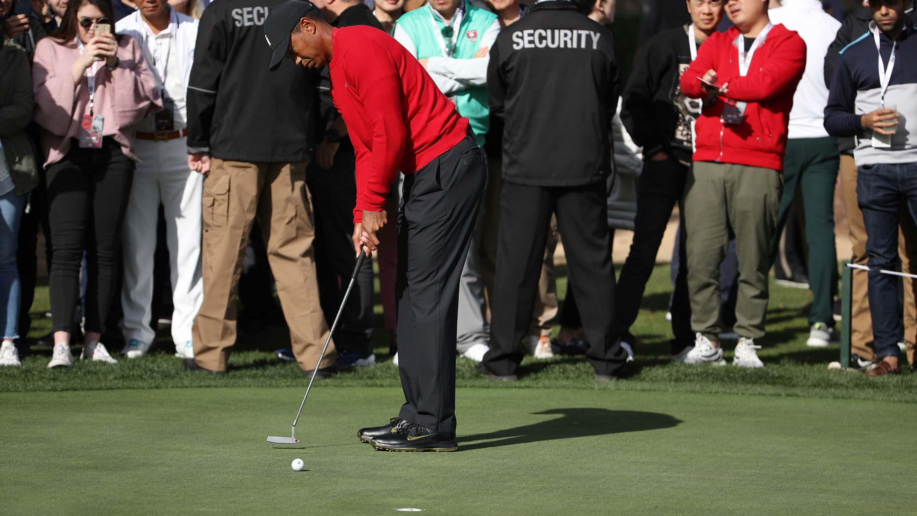 This is the first thing Tiger Woods does when he practices putting
