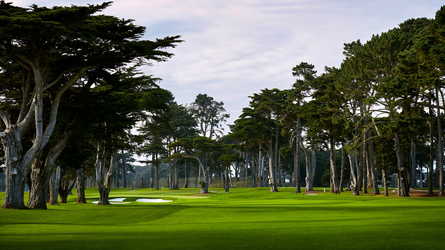 The 472-yard, par-4 6th hole at TPC Harding Park in 2018.