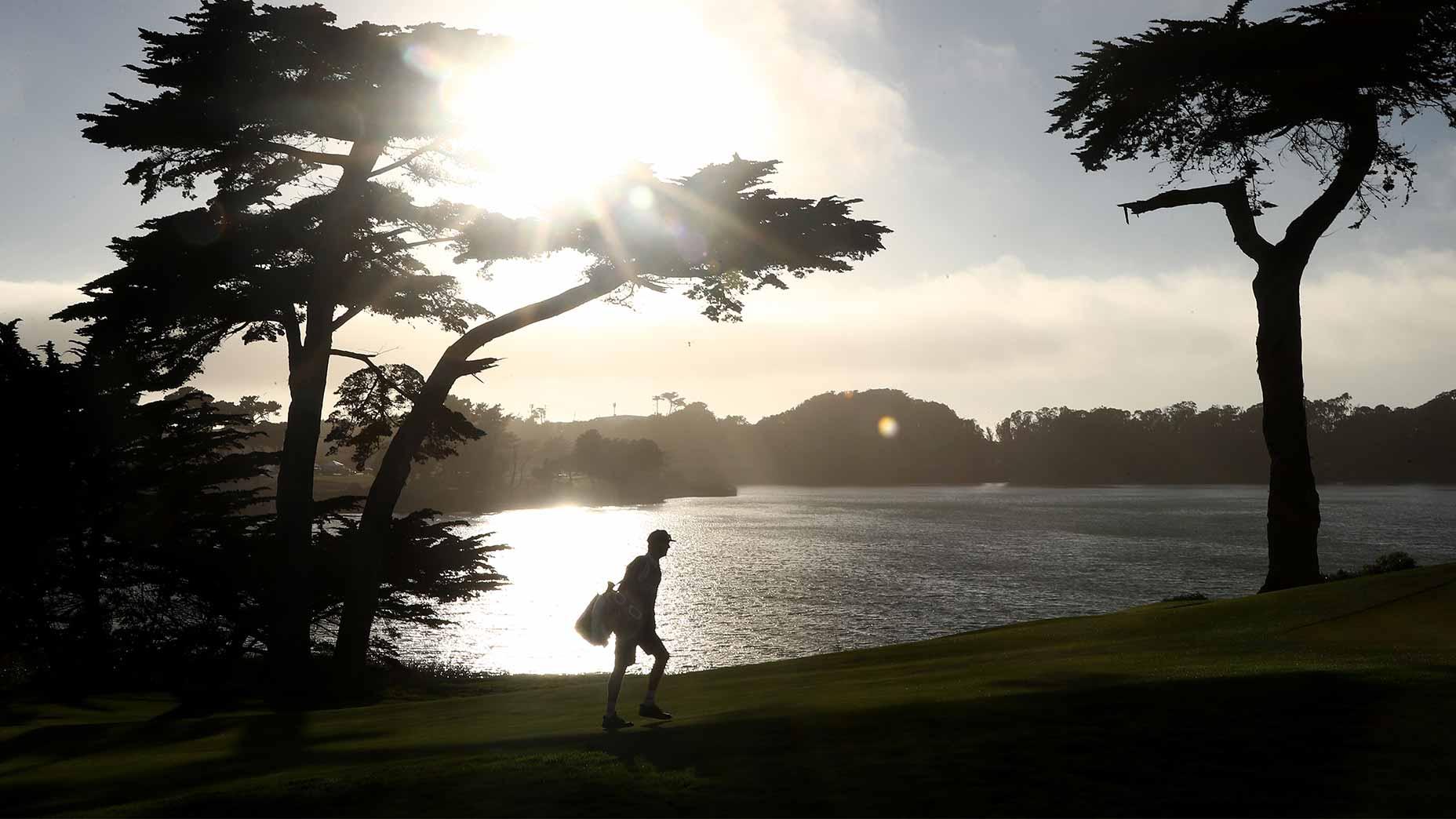 golfer walks tpc harding park