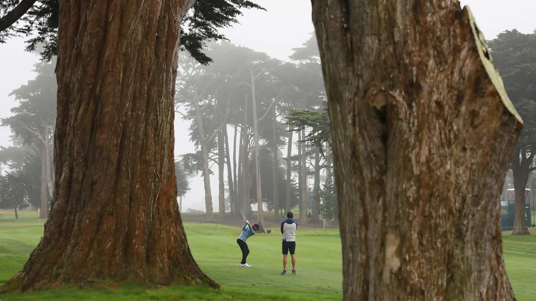Pro golfer Tommy Fleetwood plays TPC Harding Park