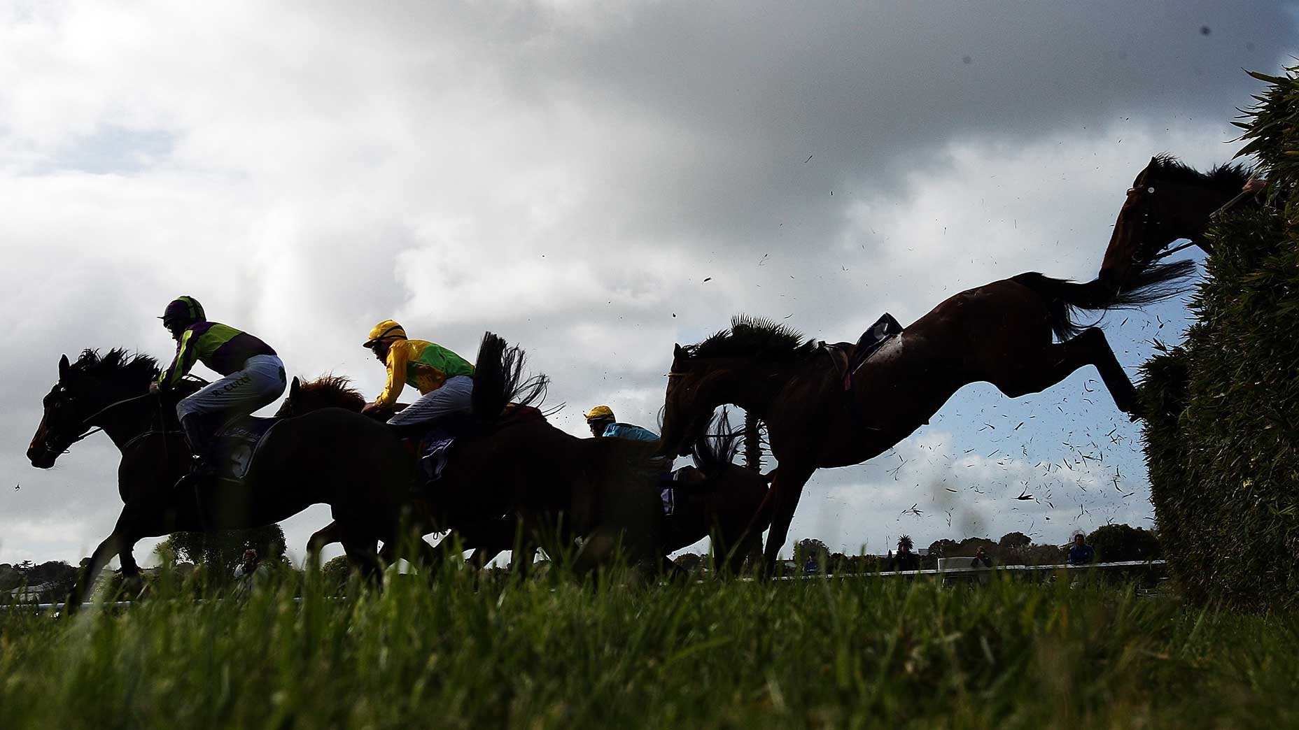 Golfer incredibly chases his errant shot – into a horse race
