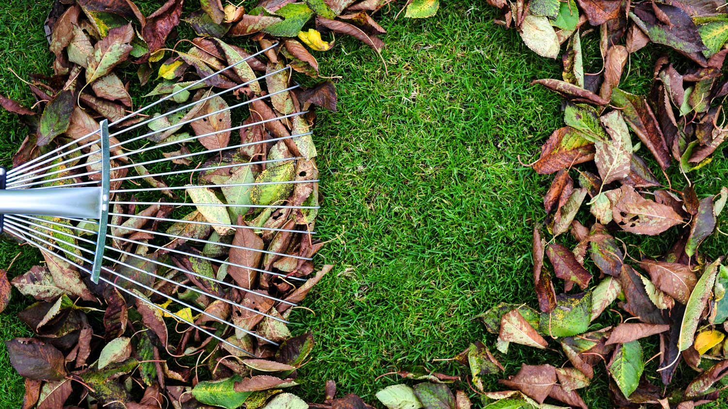 These clever lawn-care hacks will save you time (and money) while helping your yard thrive