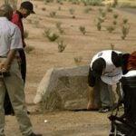 fans move a boulder for tiger woods