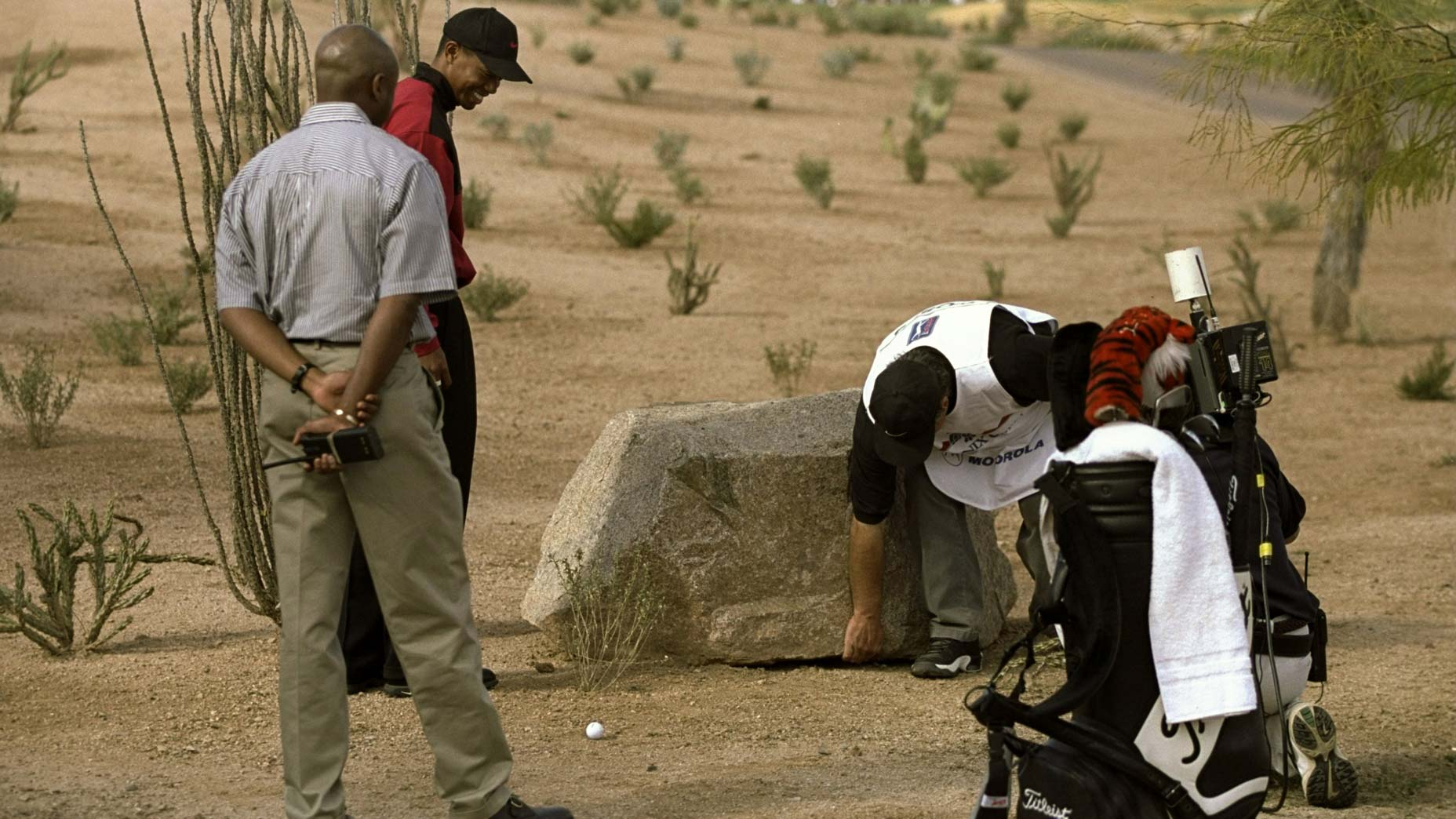 fans move a boulder for tiger woods