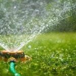 Sprinkler on a lawn.