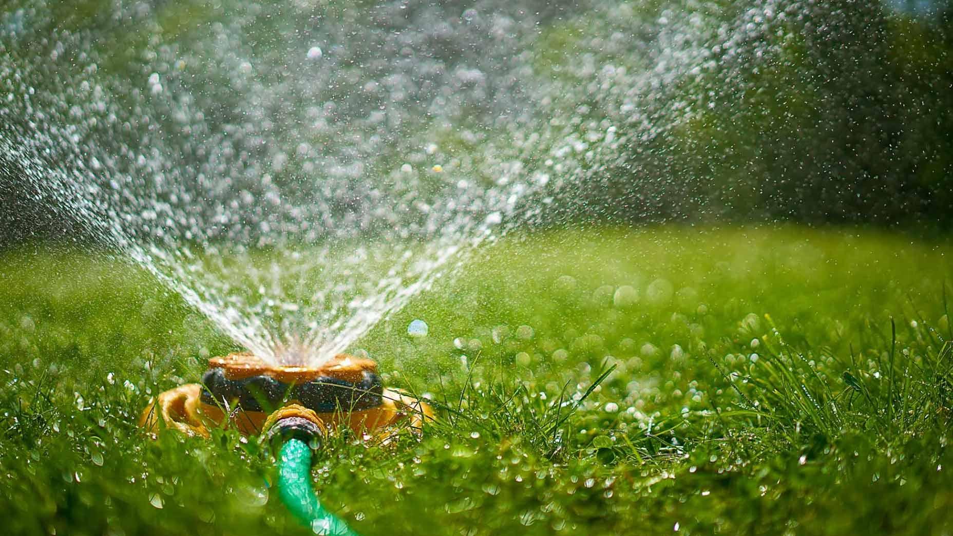 Sprinkler on a lawn.