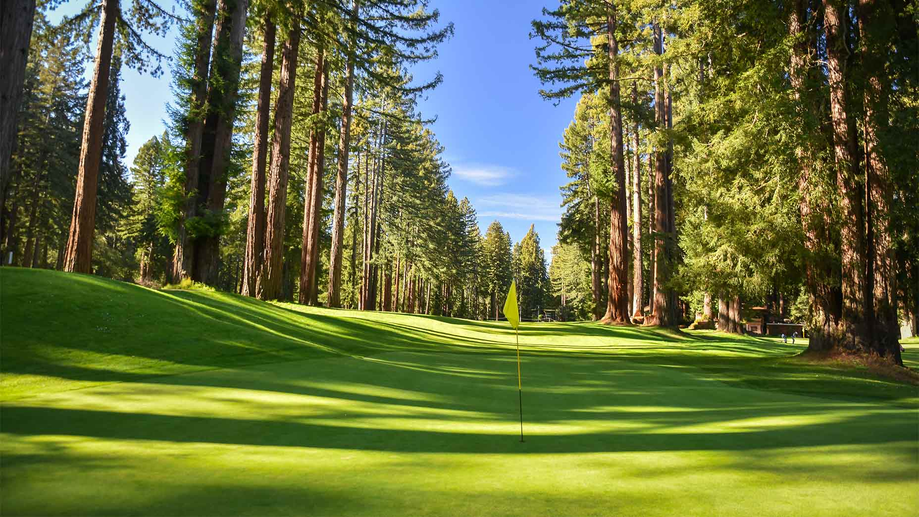 A green at Northwood Golf Club in California.