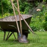 wheelbarrow with lawn tools
