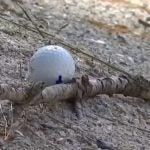 Stewart Cink golf ball