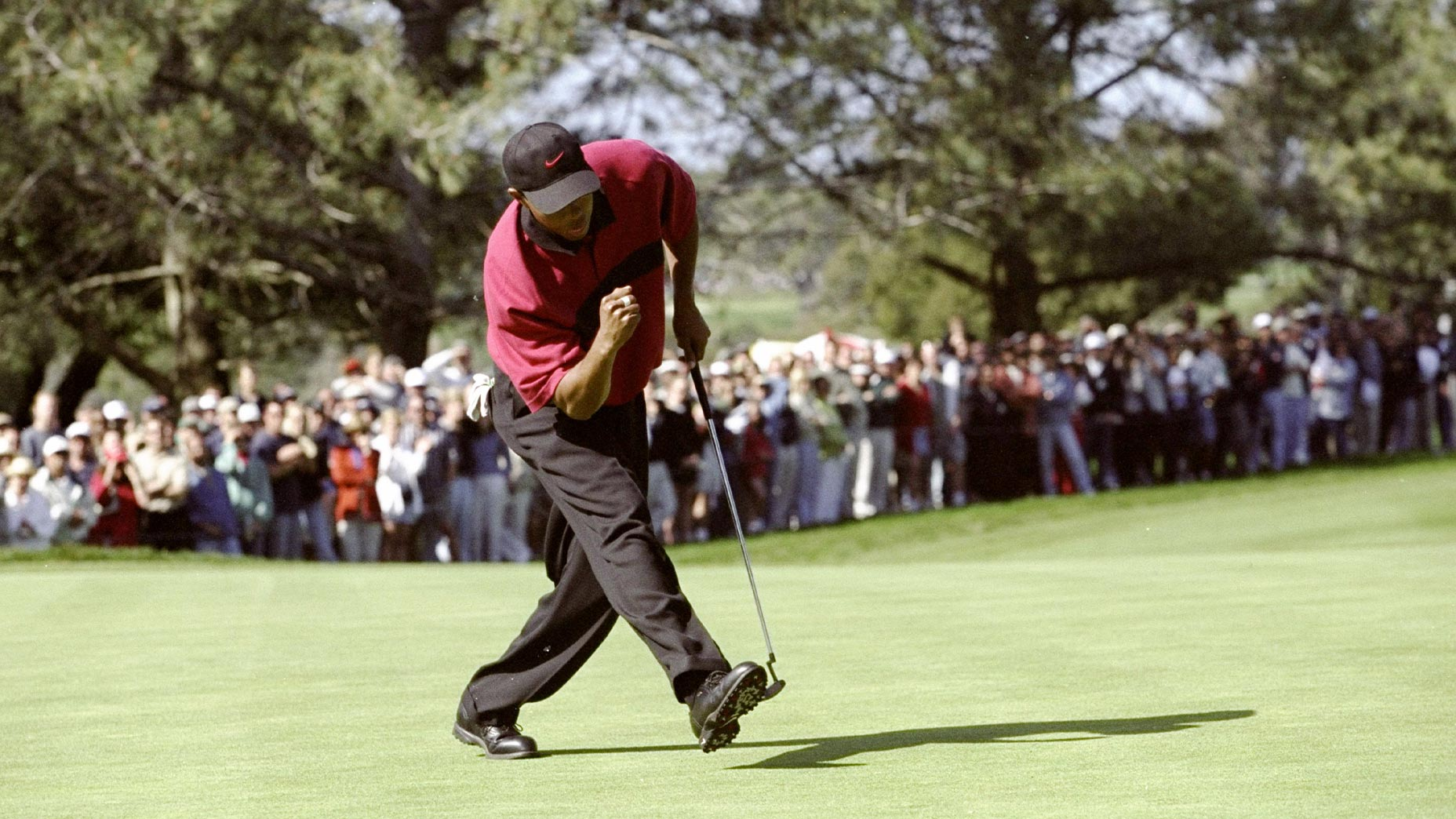 tiger woods chases putt