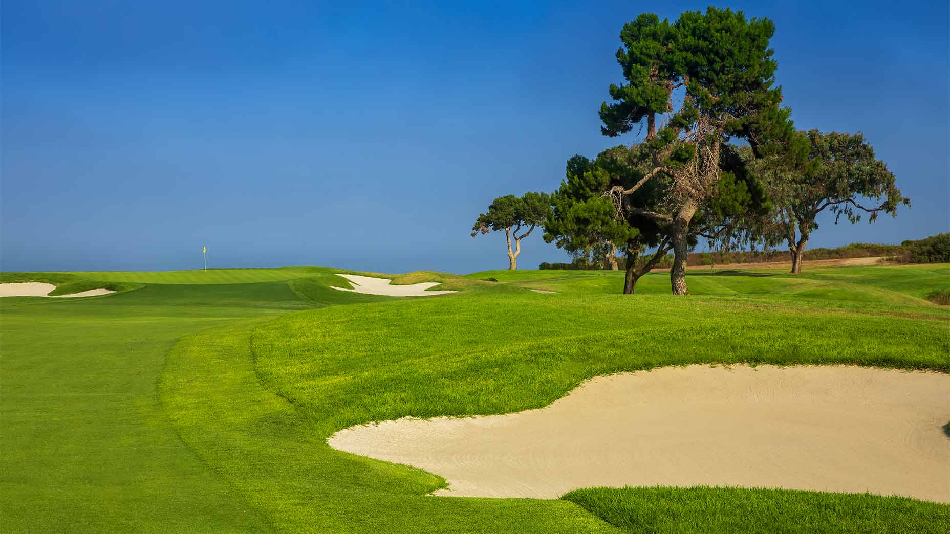 the 12th hole at torrey pines