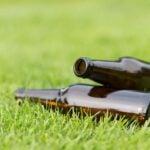 beer bottles on grass