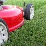 a lawn mower cutting grass