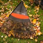 photo of a rake gathering leaves on a lawn